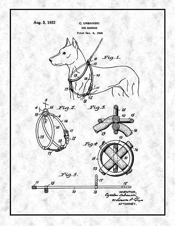 Amazon Com Dog Harness Patent Print Black Ink On White With Border