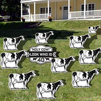 VictoryStore Yard Sign Outdoor Lawn Decorations Birthday Decoration Holy Cow Look Who