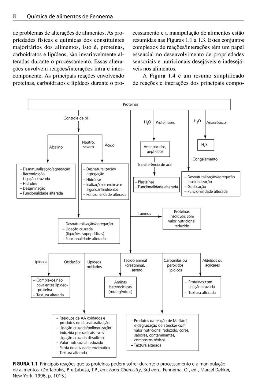 Química de Alimentos de Fennema: Amazon.es: Srinivasan ...