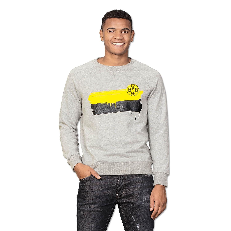 Borussia Dortmund BVB-Sweatshirt, Grau mit Farbstreifen & BVB-Logo auf der Brust, 60% Baumwolle, 40% Polyester, 116-3XL (grau (Silbergrau))