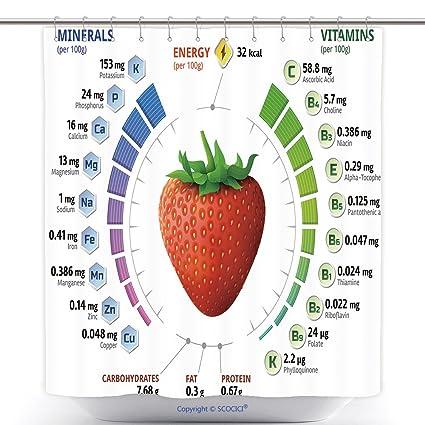 Cool cortinas de ducha Vitaminas y Minerales de jardín Infografía, Diseño de fresas sobre nutrientes