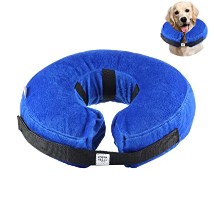 Collar súper resistente, ajustable y elástico para gatos y perros, de KOBWA: Amazon.es: Productos para mascotas