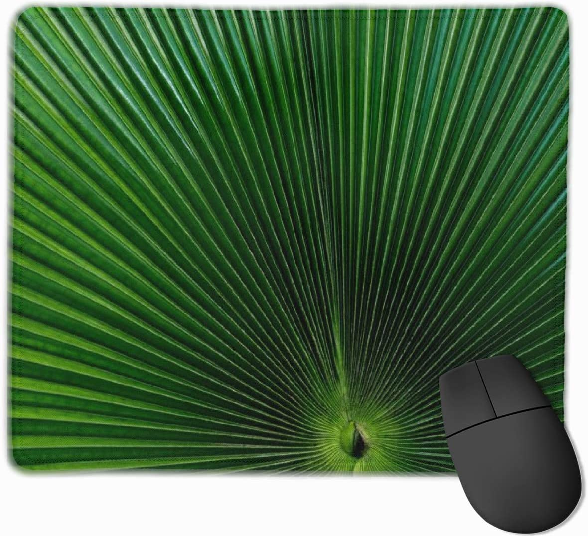 Cute Mouse Pad for Laptop Computer Non-Slip Small Home Travel Mouse Pads for Man Womengreen Fan Palm Leaf