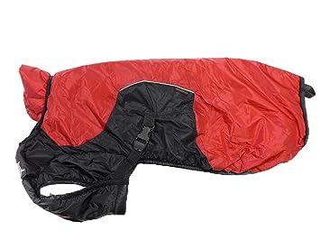 D de FA Puff de Doggy Perros Mantel, Thinsulate, talla petit2/Mini, XXS, Rojo: Amazon.es: Productos para mascotas