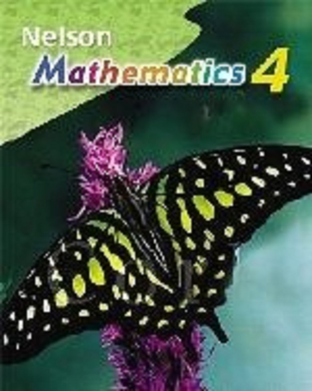 Nelson Mathematics Grade 4 Workbook: Marian Small Mary Lou Kestell ...