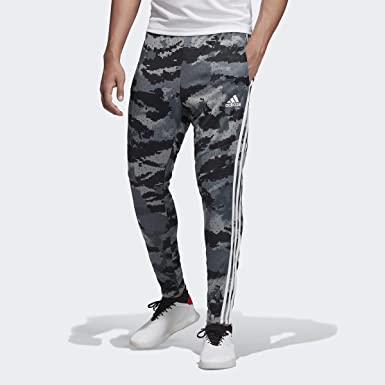 Seguro patata entre  Amazon.com: Men's Adidas Carbon Tiro 19 AOP Training Pants -: Clothing