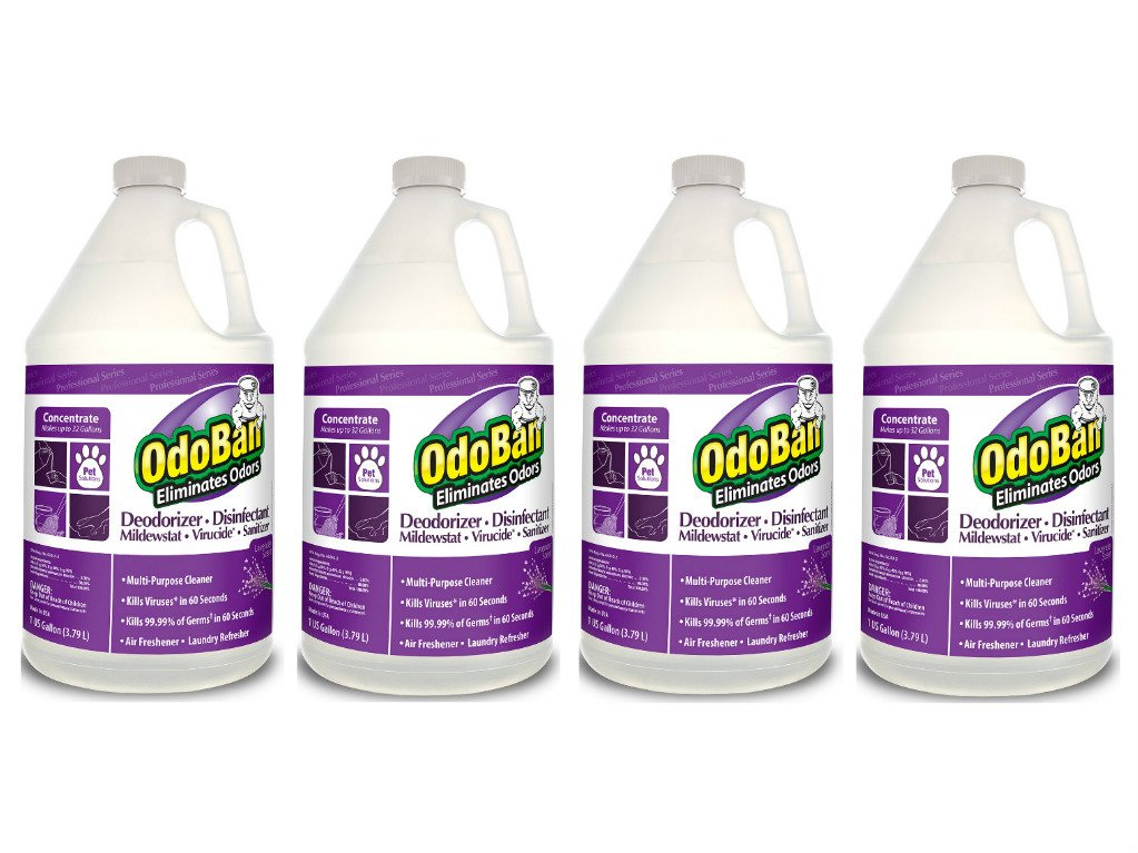 OdoBan Professional Cleaning and Odor Control Solutions, 4 Gallons Concentrate, Lavender Scent by OdoBan