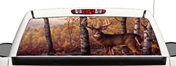 Amazoncom Truck SUV Whitetail Deer Hunting Rear Window Graphic - Rear window hunting decals for trucks