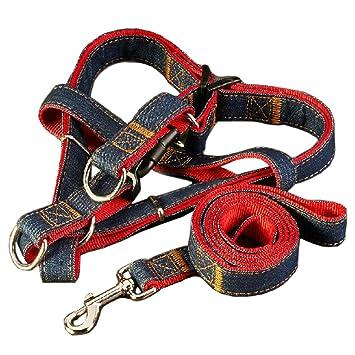 47 cm Longitud perro arnés correa, Dawn ajustable y resistente ...
