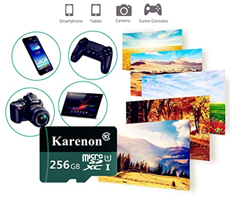 Karenon Tarjeta Micro SD 256 GB, microSDXC 256 GB Class 10 Tarjeta de Memoria + Adaptador (FS135-XD) (256GB)