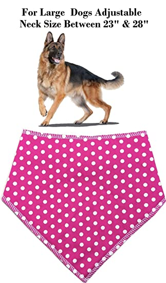 Pañuelo tipo bandana para perros Spoilt Rotten Pets