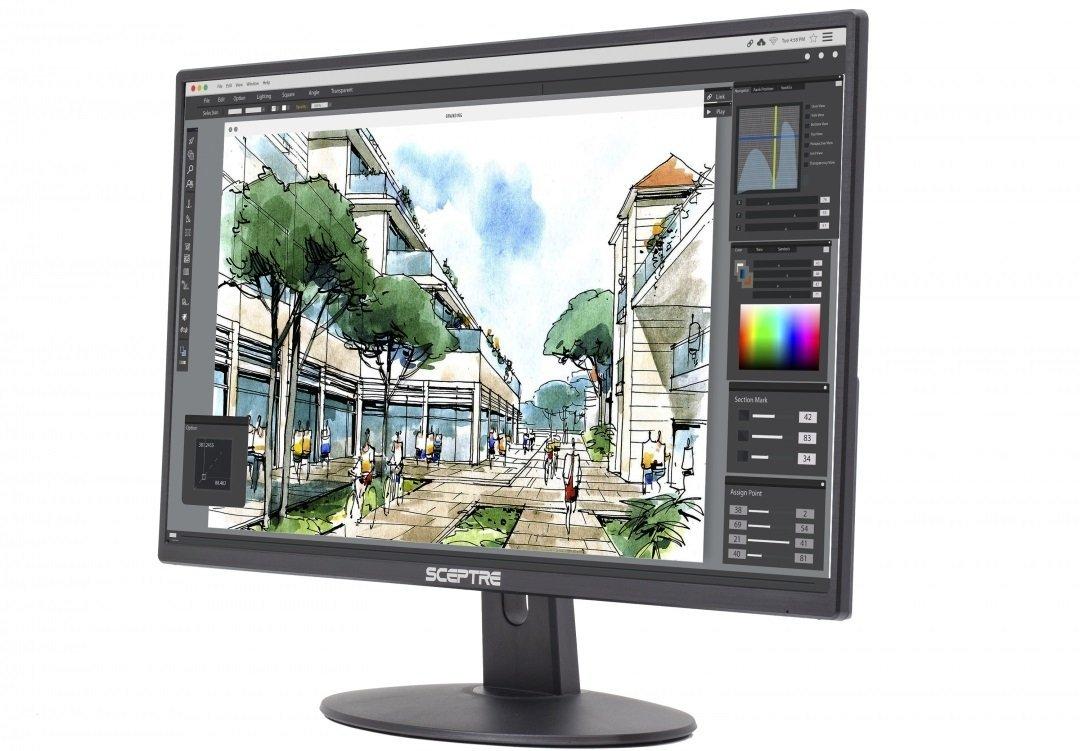Sceptre E225W-19028A 8A Series 22 inch Screen LED-Lit Monitor with HDMI DVI & VGA Ports (E225W-19208A), 2017