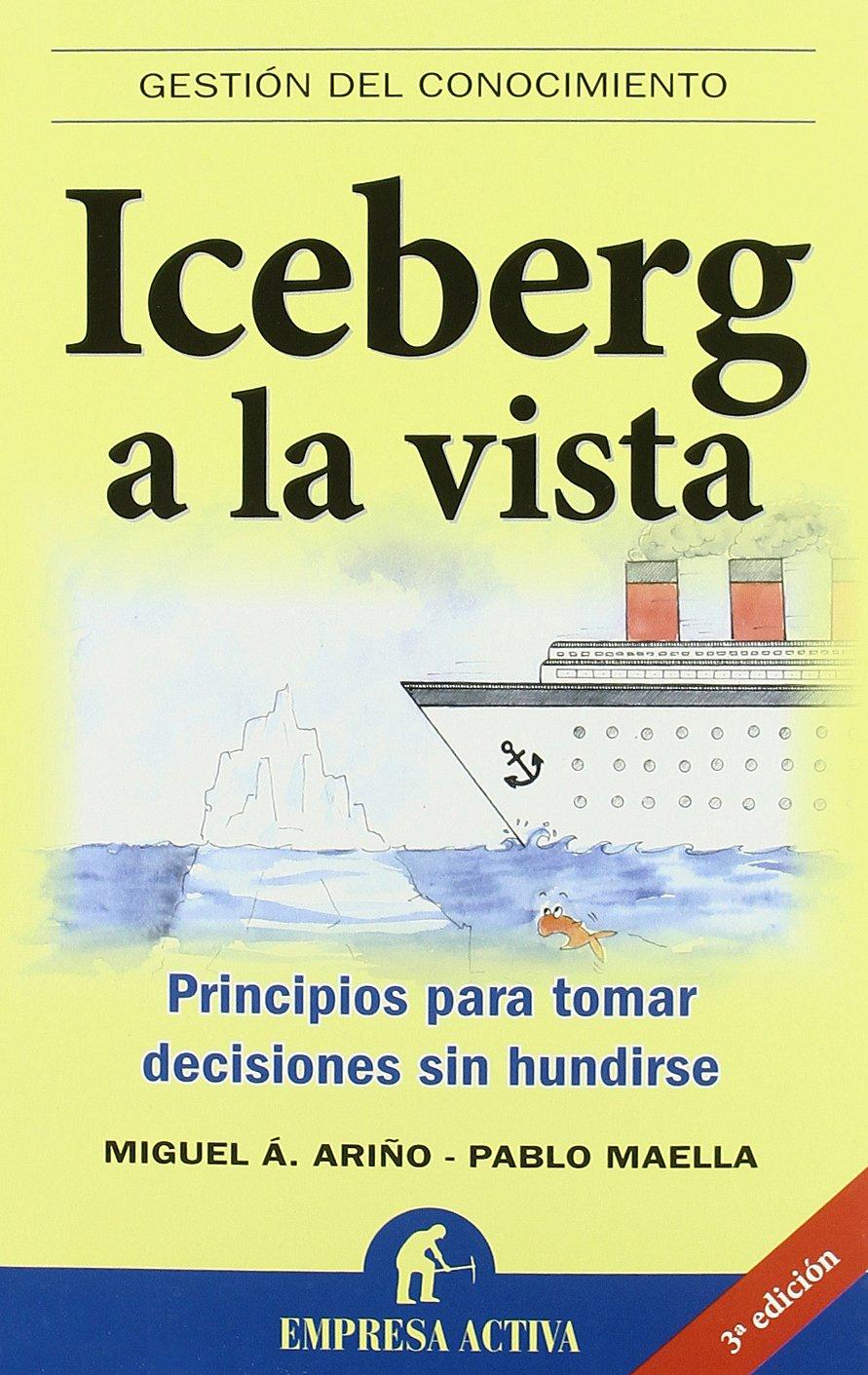 Iceberg a la vista: Principios para tomar decisiones sin ...