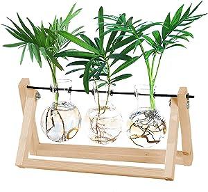 LEDREVN Desktop Propagation Stations,Desktop Glass Bulb Glass Vase with Solid Wood Shelf and Metal Rotating Rod Suitable forDecorate Home or Garden. (3 Bulb Vase-Original Wood)