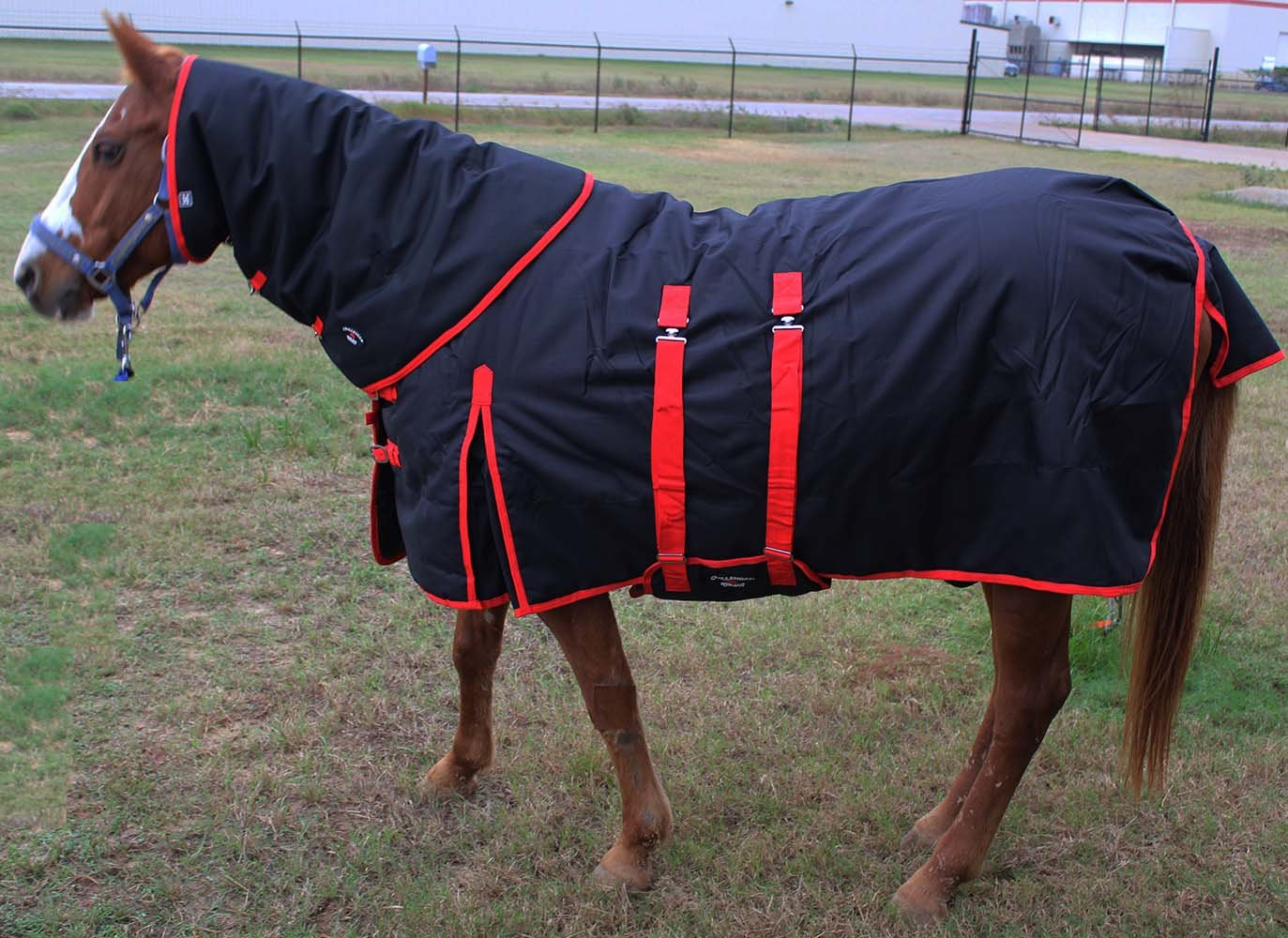 Challenger 74'' 1200D Turnout Waterproof Horse Winter Blanket Heavy Weight Belly Band Black 564Combo