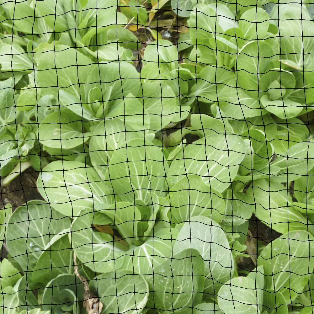 Protect Fruit Trees Garden Plant Mesh Netting Protect Against Rodents Birds for Multi-purpose Plant Protection Mesh Netting Garden FOCCTS Anti Bird Net