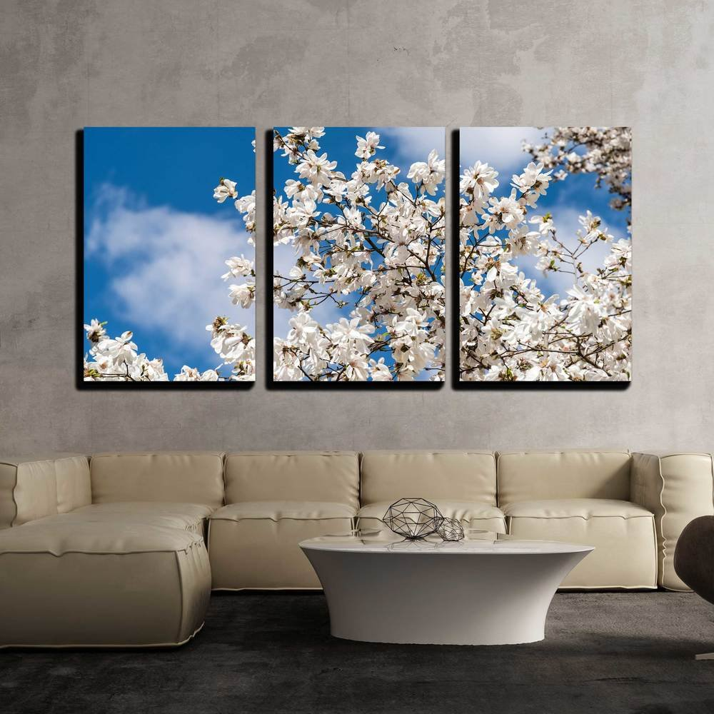 White Magnolia Flowers In Spring X3 Panels Canvas Art Wall26