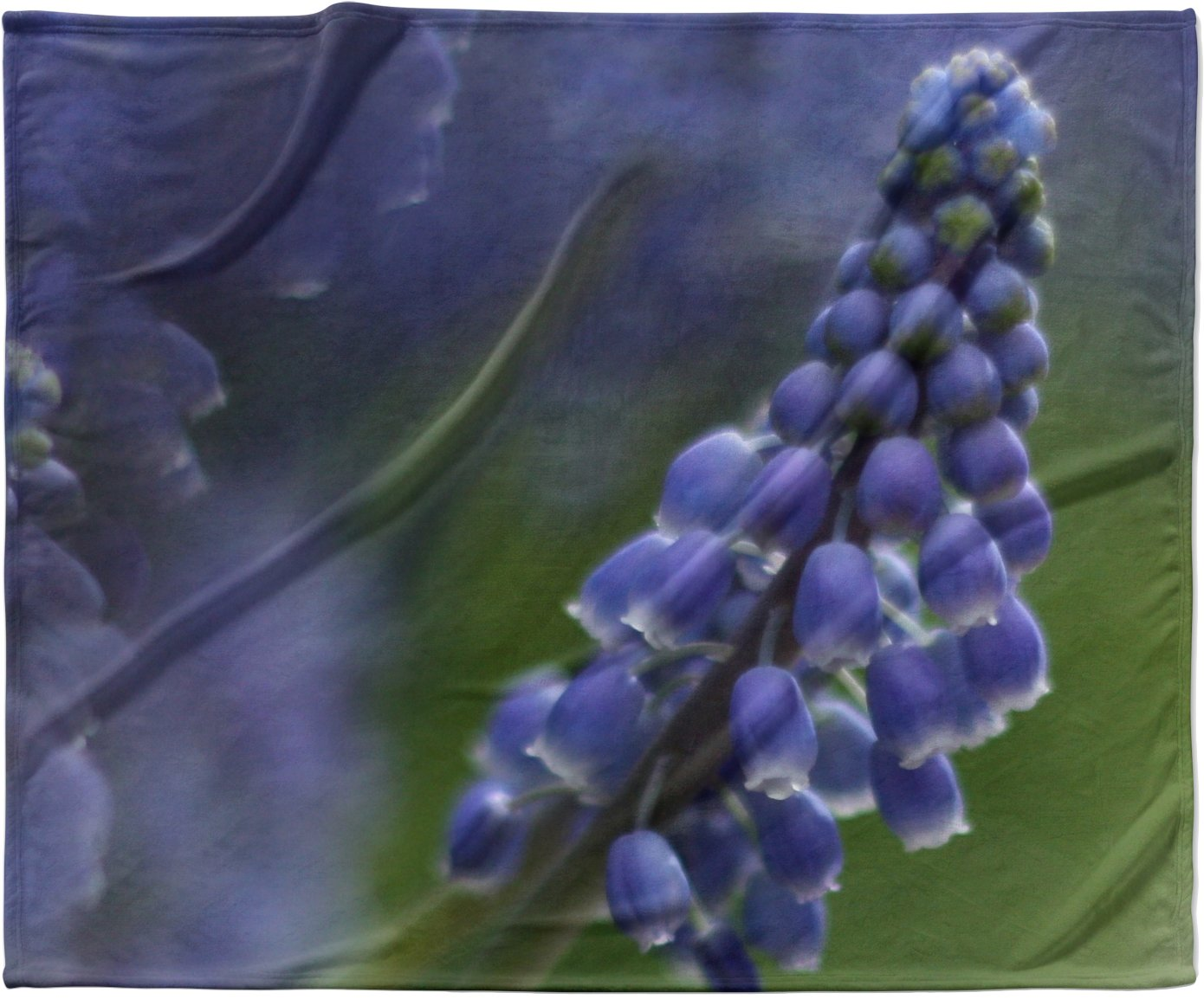KESS InHouse Angie Turner 'Grape Hyacinth' Green Purple Fleece Baby Blanket, 40' x 30'