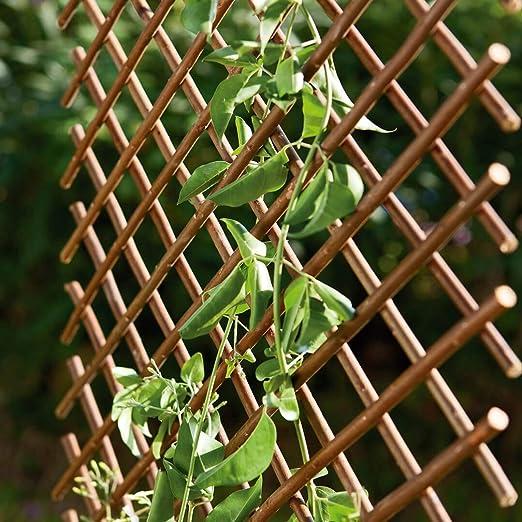 Catral 43040012 Celosía Mimbre Extensible, Mimbre, 150 x 3 x 50 cm: Amazon.es: Jardín