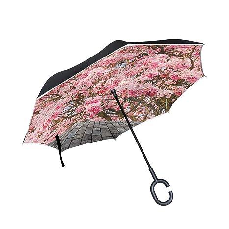 XiangHeFu Paraguas invertido de Doble Capa Invertido Hermoso Árbol ...