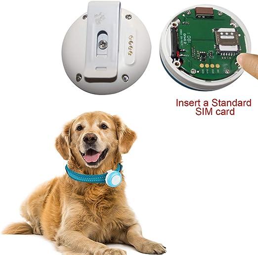 Autopmall Localizador de posicionamiento de Perro GPS para Mascotas WiFi antip/érdida Geo-Fence en Tiempo Real Resistente al Agua IP66 con Seguimiento de aplicaci/ón Web sin Vida
