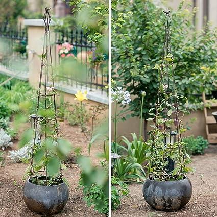 CJSWT Jardín Obelisco para Plantas trepadoras, jardín Marco de ...