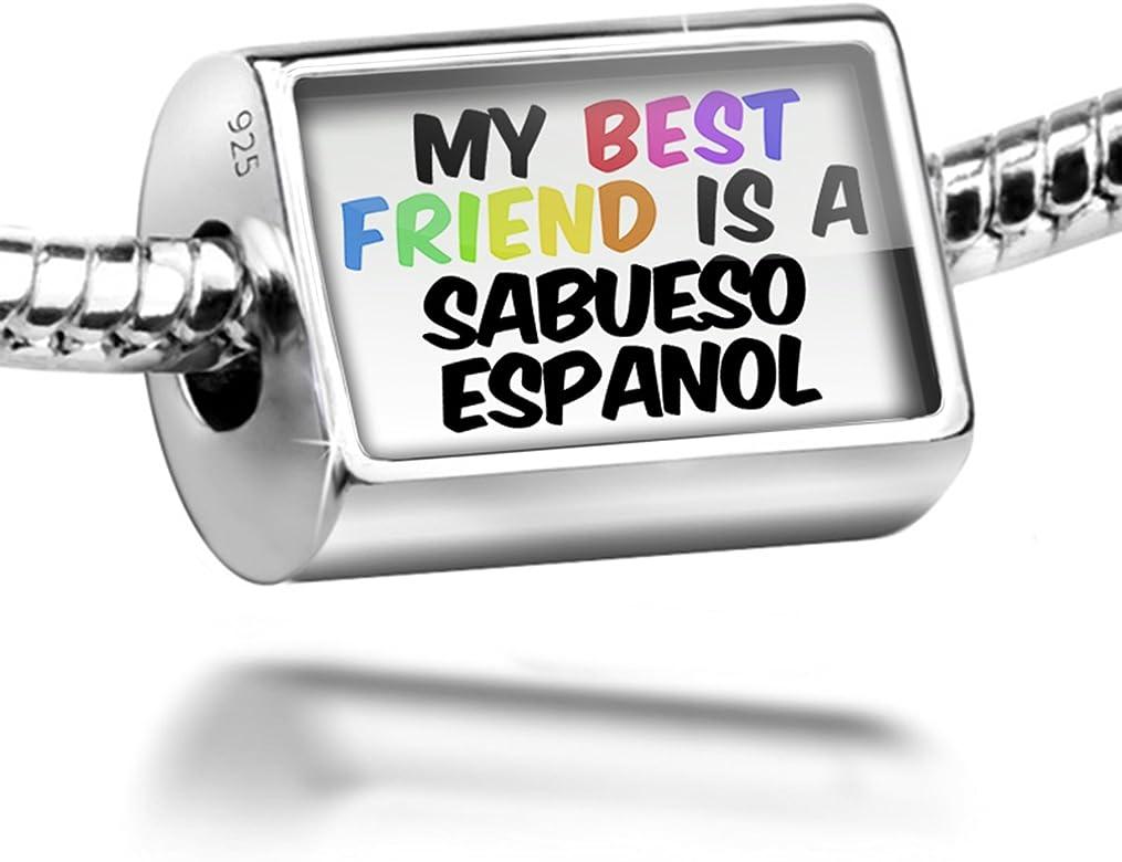 Plata de Ley Charm mi mejor amigo un perro Sabueso español de España – Bead Fi: NEONBLOND: Amazon.es: Joyería