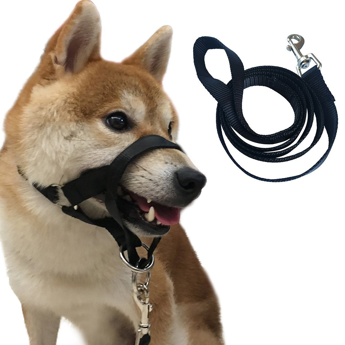 Charmsong Headcollar No Pain No Pull With Leash Breed Halter Painless Gentle Control Training Collars Black (M)