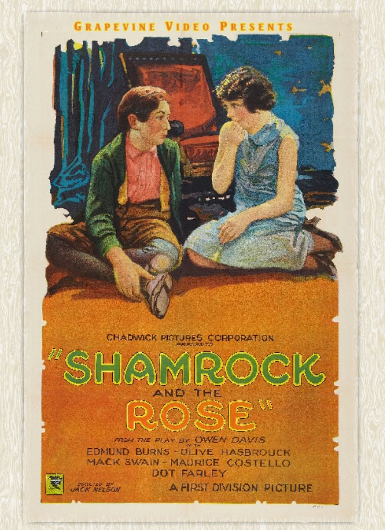 DVD : The Shamrock And The Rose (DVD)