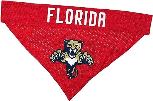 6//Large Red NHL Florida Panthers Dog Leash