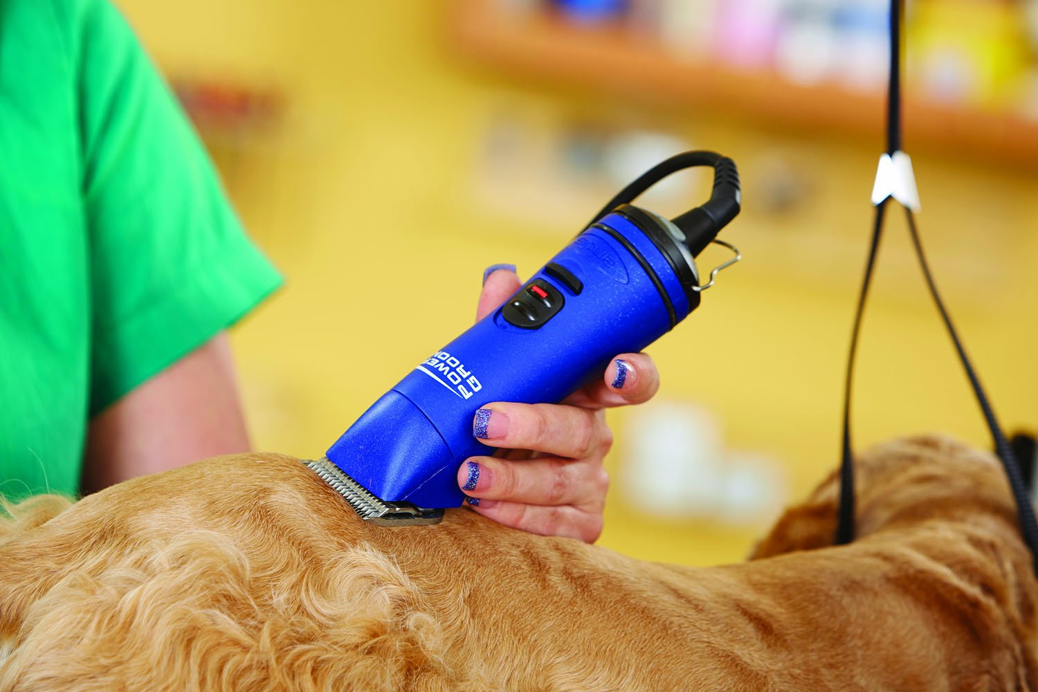 Best Clippers For Dog Heavy Coat