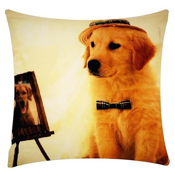 Diseño de personaje de impresión labrador perro posando Chenille algodón funda de almohada cojín de 17 x 17 pulgadas para sofá cama sofá: Amazon.es: Ropa y ...