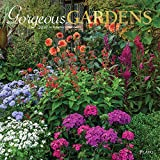 Gorgeous Gardens 2019 12 x 12 Inch Monthly Square Wall Calendar with Foil Stamped Cover by Plato, Gardening Outdoor Home Country Nature