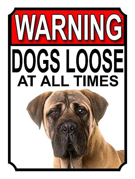 RABEAN Cartel de Advertencia de Perros Sueltos en Todo ...