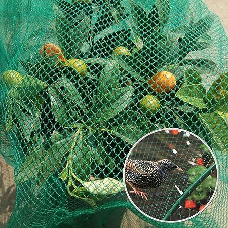 LANGYINH La Red de protección de la Planta de jardín de Nylon de la Red de la charca de la Red Anti del pájaro da Fruto la Malla Neta, Verde,6x70m: Amazon.es: Hogar