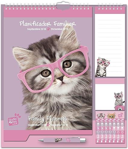 Grupo Erik Editores - Studio Pets Gato Calendario Pared Planificador 2018/ 2019, 21.5 x 32.5 cm: Amazon.es: Oficina y papelería