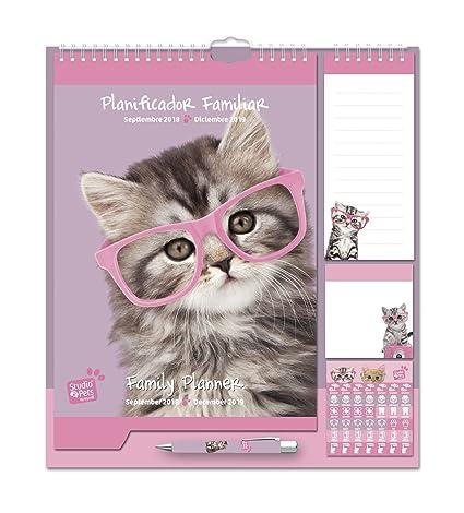 Grupo Erik Editores - Studio Pets Gato Calendario Pared Planificador 2018/2019, 21.5 x 32.5 cm