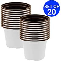 TrustBasket Nursery Plastic Pot 5 inch (Set of 20 Pots)