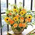 【40代前半の女友達に】引っ越し祝いにおすすめする鉢植えのお花って何がありますか?【予算一万円】