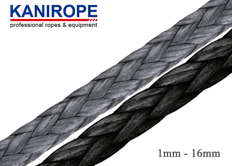 Dyneema - Cuerda de 12 hilos, 1 mm, 100 m: Amazon.es ...