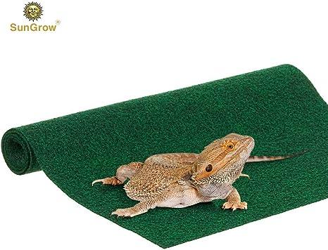 Alfombrilla de lagarto biodegradable (1 unidad), no abrasivo ...
