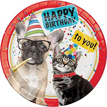 Birthday Cats and Dogs Large Paper Plates (10ct)  sc 1 st  Amazon.com & Amazon.com: Birthday Cats and Dogs Large Paper Plates (10ct): Toys ...