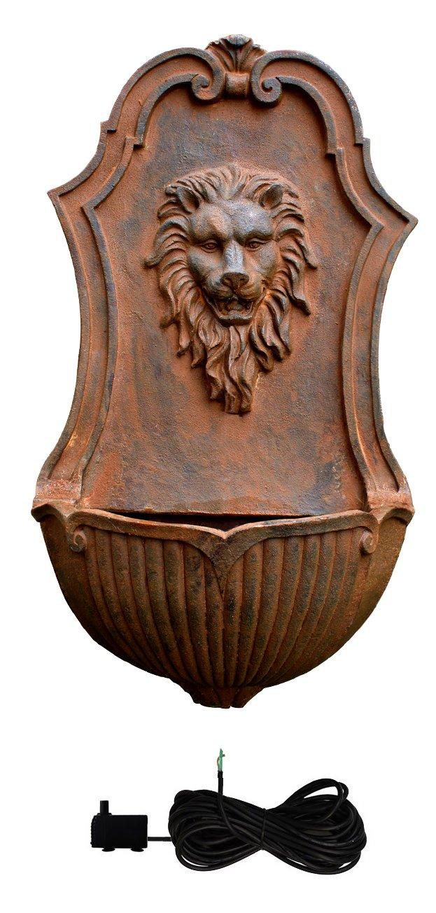 Fontaine Murale Tete Lion: Amazon.fr: Jardin