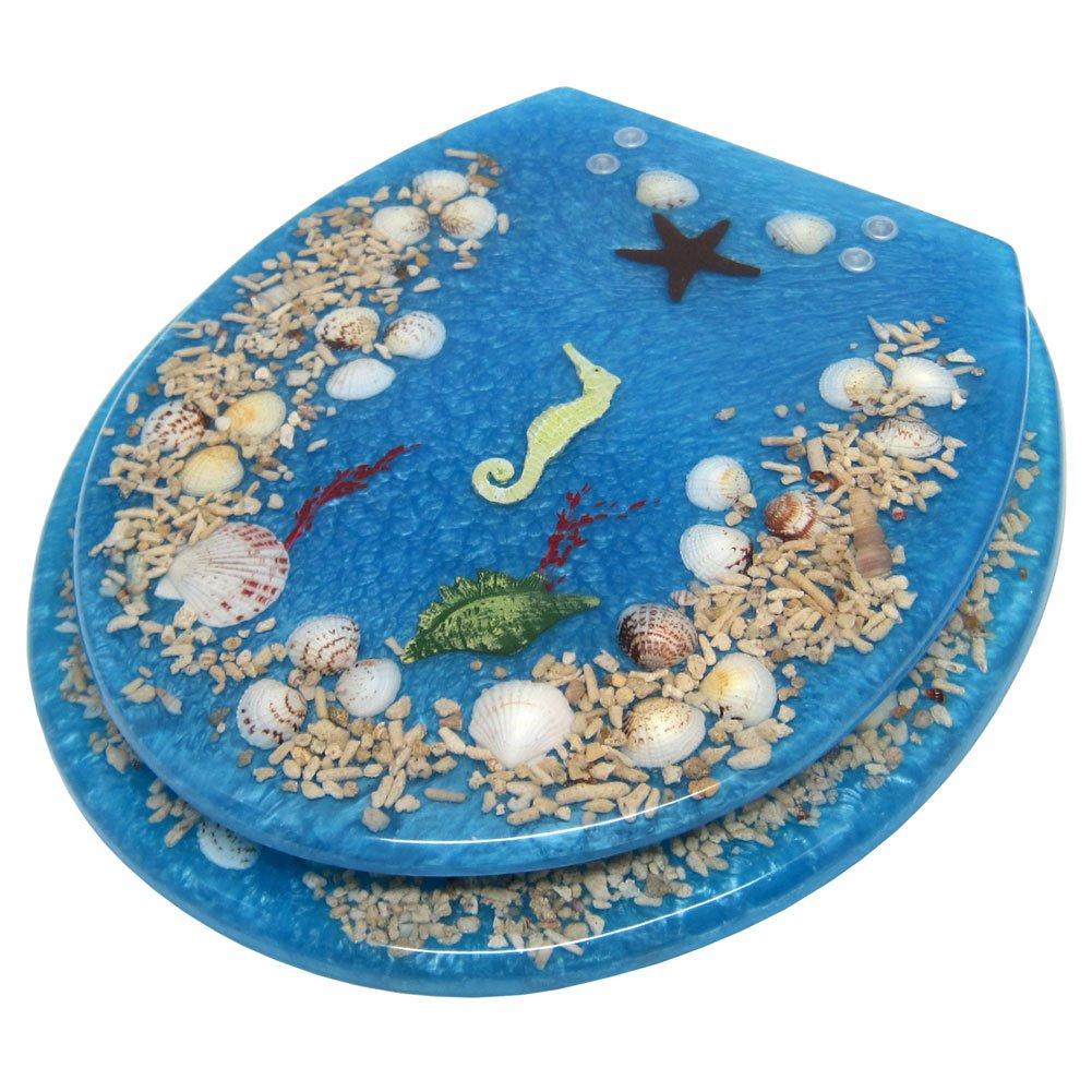sea shell toilet seat. Amazon com  Elegant Touch Seashell Acrylic Toilet Seat Light Blue Home Kitchen