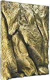 Exoterra Fond de Décoration en Relief pour Terrarium 45x60 cm pour Reptiles et Amphibiens