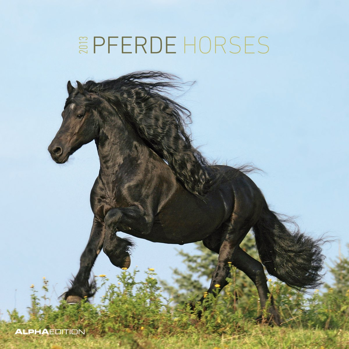 pferde-broschrenkalender-2013