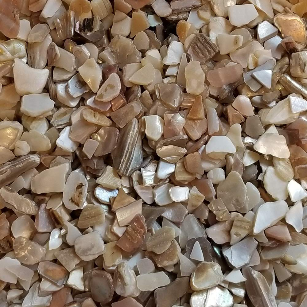 BeachWalk Small Natural Crushed Shells - for Weddings, Vase Filler, Home Décor, and Crafts (48 oz (3 lb), Natural Pearl)
