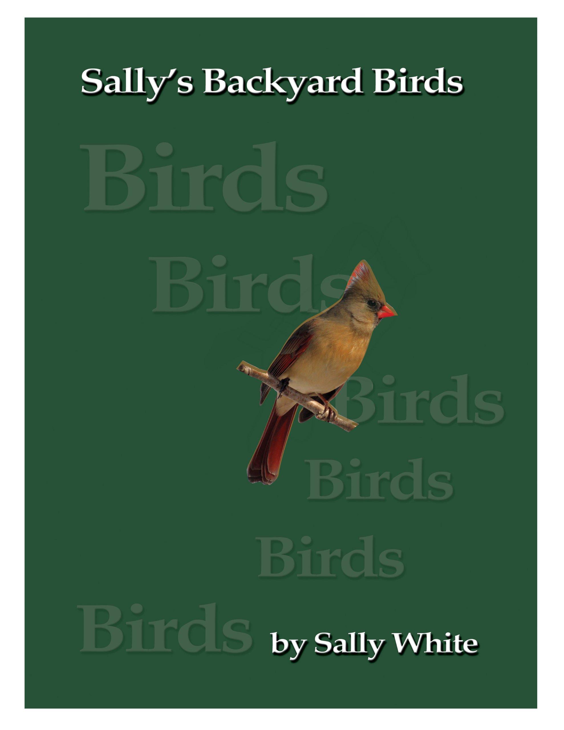 Download Sally's Backyard Birds PDF