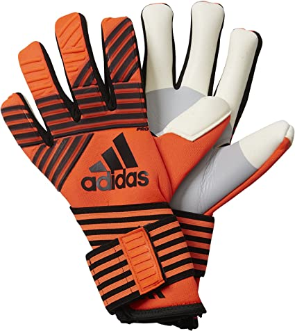 Profesor de escuela cerebro Móvil  adidas Men's Ace Trans Pro Gloves: Amazon.co.uk: Clothing