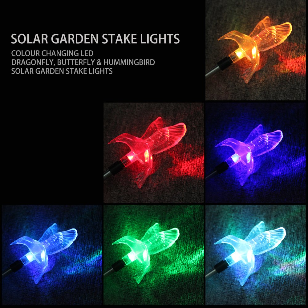 Amazon.com : SZMINILED Color Changing Solar Powered LED Garden Stake Lights    Hummingbird U0026 Butterfly U0026 Dragonfly Kit For Outside Garden Patio Yard  Lawn ...